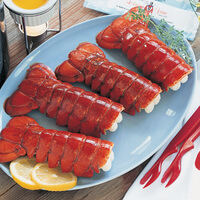 Lobster Of The Month Club - 3 Months