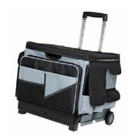 Rolling Cart And Organizer Set