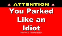 You Parked Like An Idiot