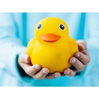 Pi Lab: Edwin Interactive Smart Duck