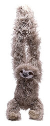 Hanging 3 Toed Sloth