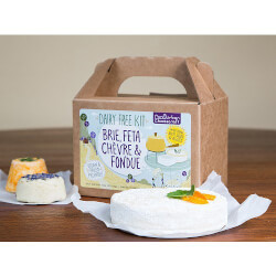 DIY Cheese Kit