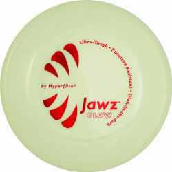 Glow-in-the-Dark Frisbee