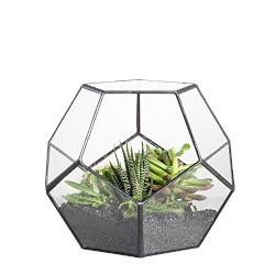 Geometric Sphere Glass Terrarium